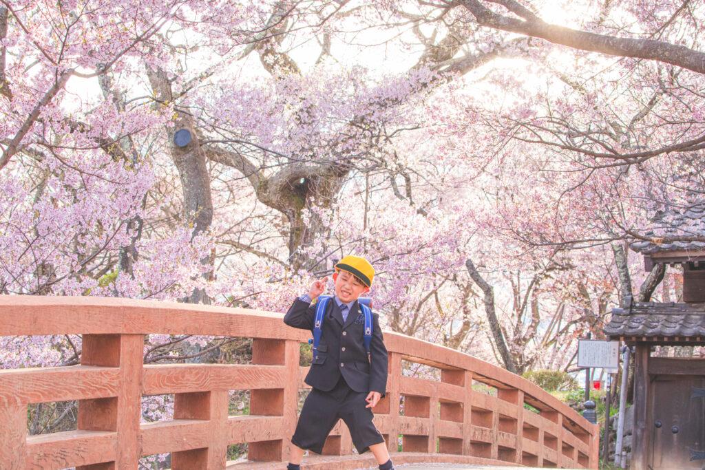 入学・卒園記念を桜と祝う🌸
